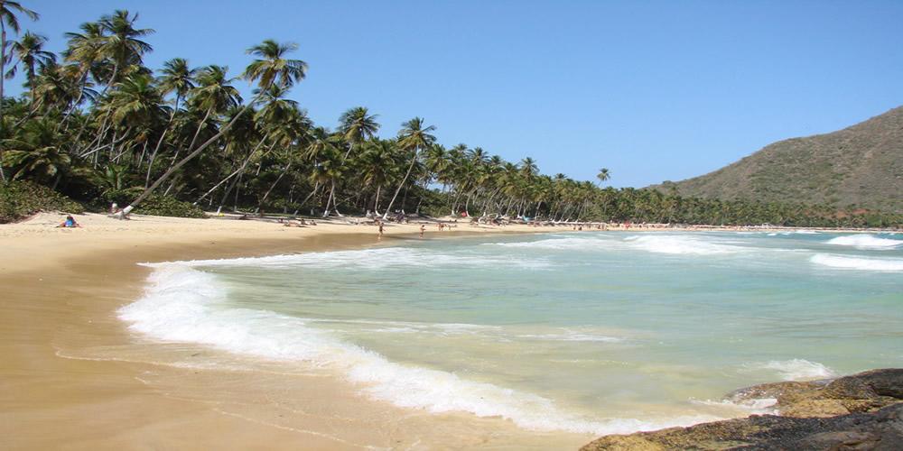 Playa Grande Choroní-Estado Aragua-Venezuela.